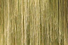 Línea ligera del oro Fotografía de archivo libre de regalías
