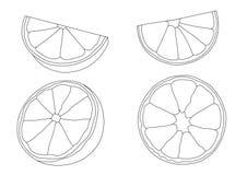 Línea limón y fruta fresca anaranjada ilustración del vector