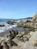 Línea opiniones de la costa Fotos de archivo