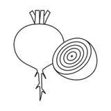 Línea remolacha del icono Foto de archivo libre de regalías