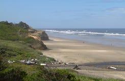 Línea salvaje de la costa Fotografía de archivo