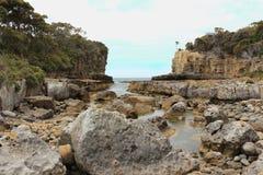 Línea tasmana de la orilla Fotografía de archivo