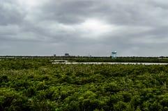 Línea visión del cielo de Dania Beach Fotografía de archivo libre de regalías