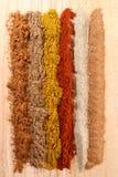 Líneas de diversas especias Fotografía de archivo libre de regalías