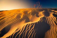 Líneas de flujo de la duna de arena fotos de archivo