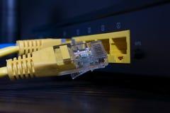 Líneas de Internet con un conector desconectado imagen de archivo libre de regalías