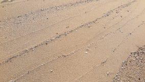 Líneas de la textura de arena en la playa fotos de archivo libres de regalías