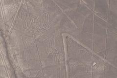 Líneas de Nazca Fotografía de archivo