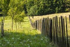 Líneas del paisaje Fotos de archivo