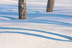 Líneas delicadas azules de sombra en la nieve blanca 2 Fotografía de archivo