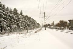 Líneas eléctricas Bosque congelado Fotografía de archivo libre de regalías