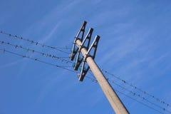 Líneas eléctricas con los pájaros Foto de archivo libre de regalías
