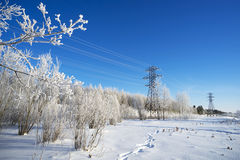 Líneas eléctricas cubiertas con nieve Foto de archivo libre de regalías
