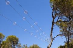 Líneas eléctricas protección de los pájaros Imágenes de archivo libres de regalías