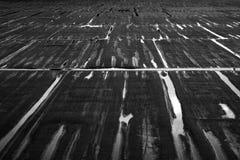 Líneas en el agua Fotografía de archivo libre de regalías