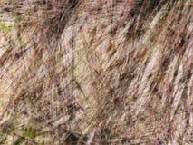 Líneas lineares al azar fondo abstracto fotografía de archivo libre de regalías