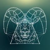 Líneas mágicas de las ovejas conectadas con los puntos Imagenes de archivo