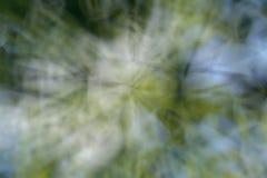 Líneas verdes y ángulos abstractos del fondo borrosos Fotos de archivo libres de regalías
