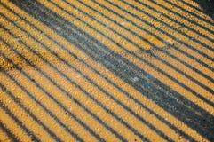Líneas y sombras de la calle Fotografía de archivo libre de regalías