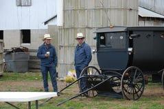 Língua de colagem masculina adulta de Amish para fora Imagens de Stock Royalty Free