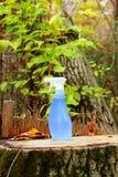 Líquido de limpeza amigável de Eco fotos de stock royalty free