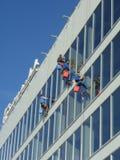 Líquido de limpeza de janela astracã rosie fotografia de stock royalty free