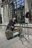 Líquidos de limpeza das sapatas em Istambul Imagem de Stock Royalty Free
