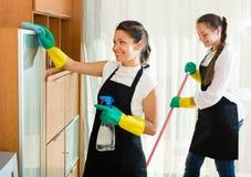 Líquidos de limpeza profissionais no trabalho Fotos de Stock
