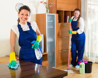 Líquidos de limpeza profissionais no trabalho Imagens de Stock