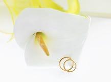Lírio de Calla com alianças de casamento Foto de Stock