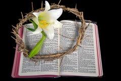 Lírio de Páscoa com a coroa de espinhos na Bíblia imagens de stock royalty free