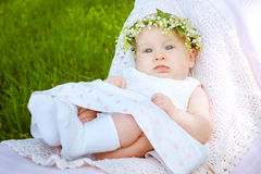 Lírio do bebê e da flor do vale Fotos de Stock Royalty Free