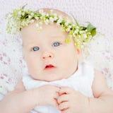 Lírio do bebê e da flor do vale Foto de Stock
