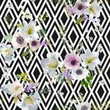 Lírio e Anemone Flowers Geometric Background do vintage Foto de Stock