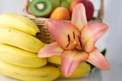 Lírio e bananas Fotos de Stock