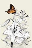 Lírio e borboleta de tigre Foto de Stock Royalty Free
