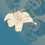 lírio no fundo floral ilustração royalty free