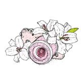 Lírios bonitos e uma câmera do vintage Ilustração do vetor Flores delicadas Cópia do vintage no cartão, no cartaz ou na roupa ilustração royalty free