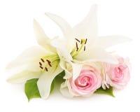 Lírios brancos e rosas Foto de Stock Royalty Free