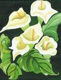 Lírios brancos pintados Fotos de Stock Royalty Free