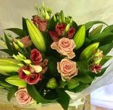 Lírios cor-de-rosa das rosas Fotografia de Stock Royalty Free