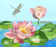 Lírios de água pintados Imagem de Stock