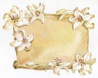Lírios de papel e brancos Fotografia de Stock Royalty Free