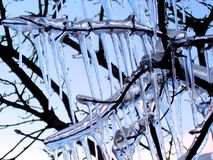 lód do więzienia Fotografia Stock