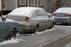 Lód na drzewach i samochodach obrazy royalty free