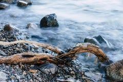 Lód na gałąź jeziorem zdjęcia stock