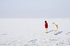 Lód na Jeziornym Balaton Obrazy Stock