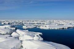 Lód na morzu Zdjęcie Stock