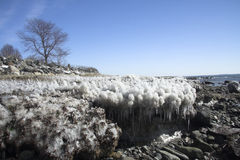 lód na plaży fotografia stock