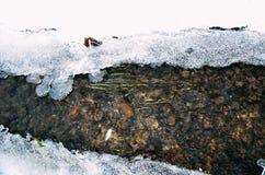 Lód przy rzeką przy zimą Fotografia Stock